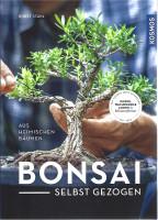 Bonsai selbst gezogen