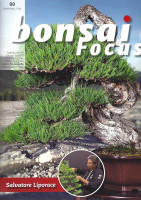 Bonsai Focus, Nr.99