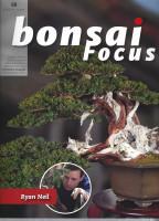 Bonsai Focus, Nr.98