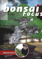 Bonsai Focus, Nr.103