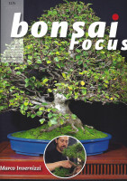 Bonsai Focus, Nr.105
