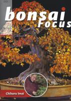Bonsai Focus, Nr. 111
