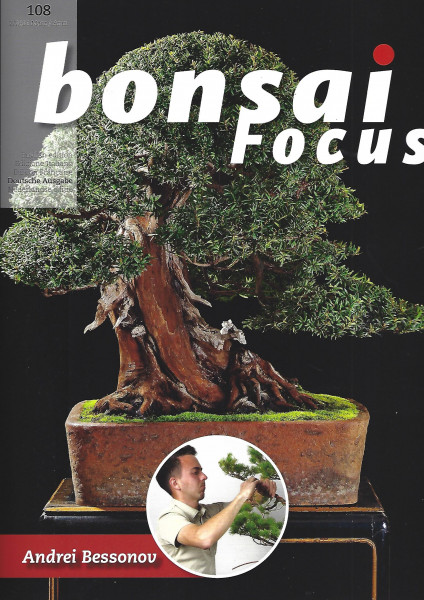 Bonsai Focus, Nr. 108