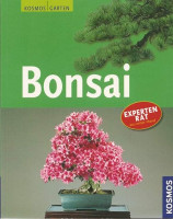 Bonsai - Faszination Fernost
