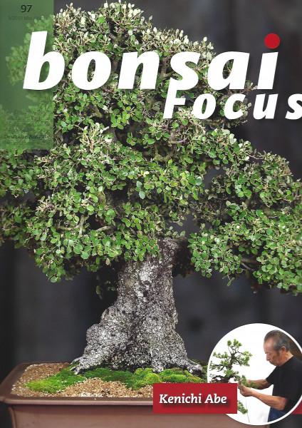 Bonsai Focus, Nr.97