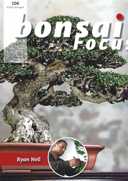 Bonsai Focus, Nr.104
