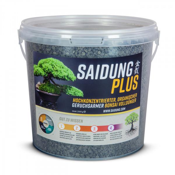 Saidung Plus