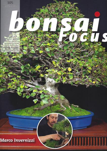 Bonsai Focus, Nr.105